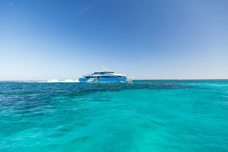 1-Day The Rottnest Grand Island Tour from Perth W/Hotel Transfer