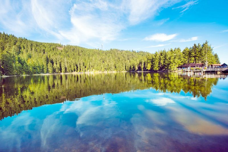 Black Forest Small Group Tour from Strasbourg w/ Baden-Baden