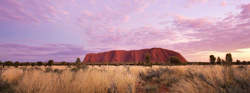 Morning Guided Base Walk & Self Drive Day Tour from Uluru