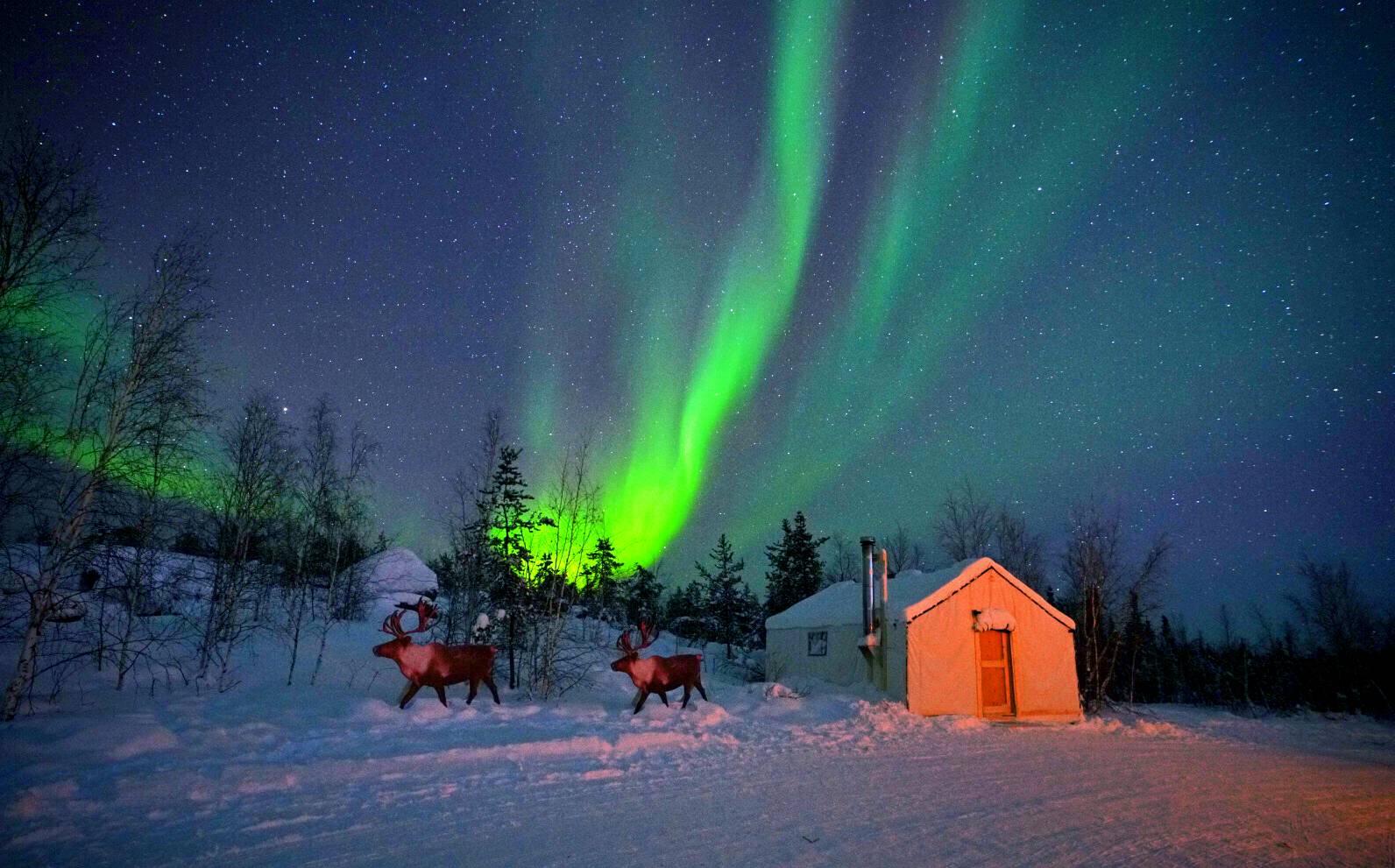 3-Day Yellowknife Aurora Viewing Tour